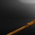 Frivolous Litigators Bite the Hands That Care for Them