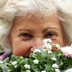 Does Older Equal Happier?