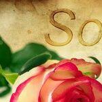 'I Apologize' Instead of 'I'm Sorry'