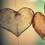 Sad Valentine's Day Memories