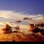 Bleak Outlook on Marriage