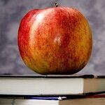 Hyper-Involved School Administrators