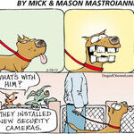 Dogs of C-Kennel for Feb 19, 2012