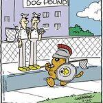 Heathcliff for Feb 25, 2014
