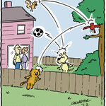 Heathcliff for Jul 02, 2014