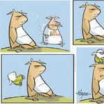 The Barn for Jun 01, 2014
